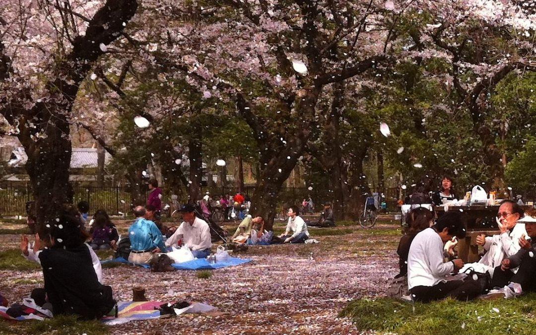 El día de la Madre en Japón (Haha no hi 母の日)