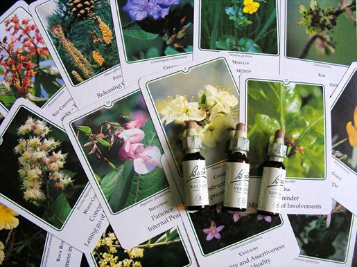 La terapia de las flores de Bach
