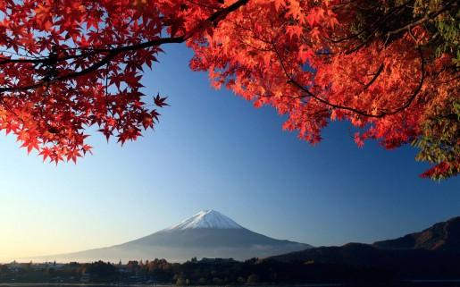 otono-japon