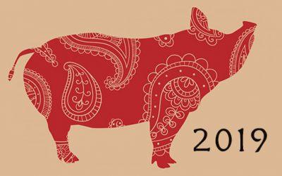 Año nuevo chino 2019: Año del cerdo de tierra